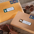 Dymo Limited Edition Holiday Moose 30251 Address Labels