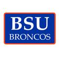 Boise State University Custom Return Address Labels