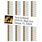 Scary Black Cat Return Address Labels