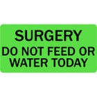 Surgery Do Not Feed or Water Today Veterinary Labels