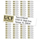 University of Central Florida Knights Custom Return Address Labels