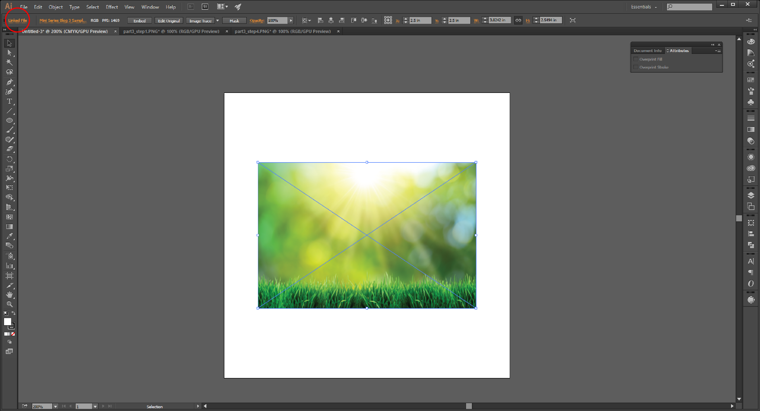 Linking Images in Illustrator Step 5