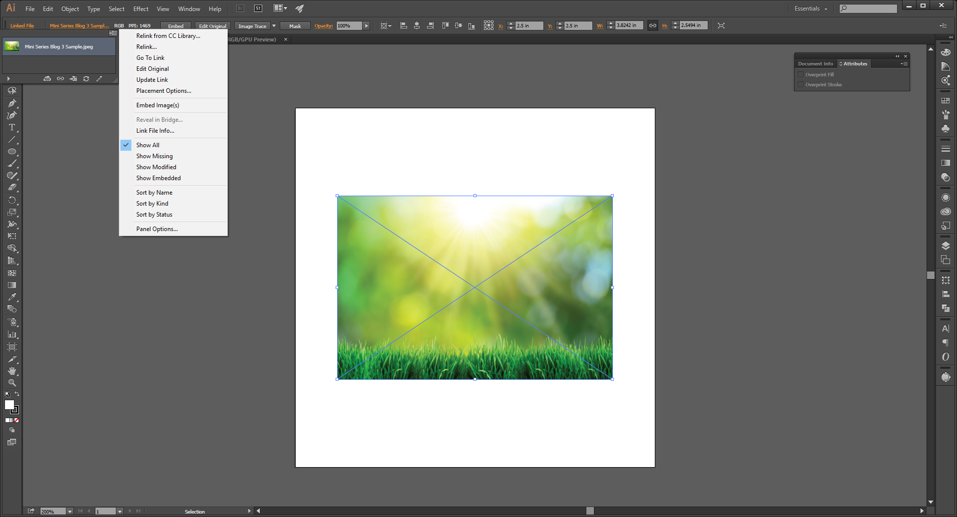 Linking Images in Illustrator Step 6