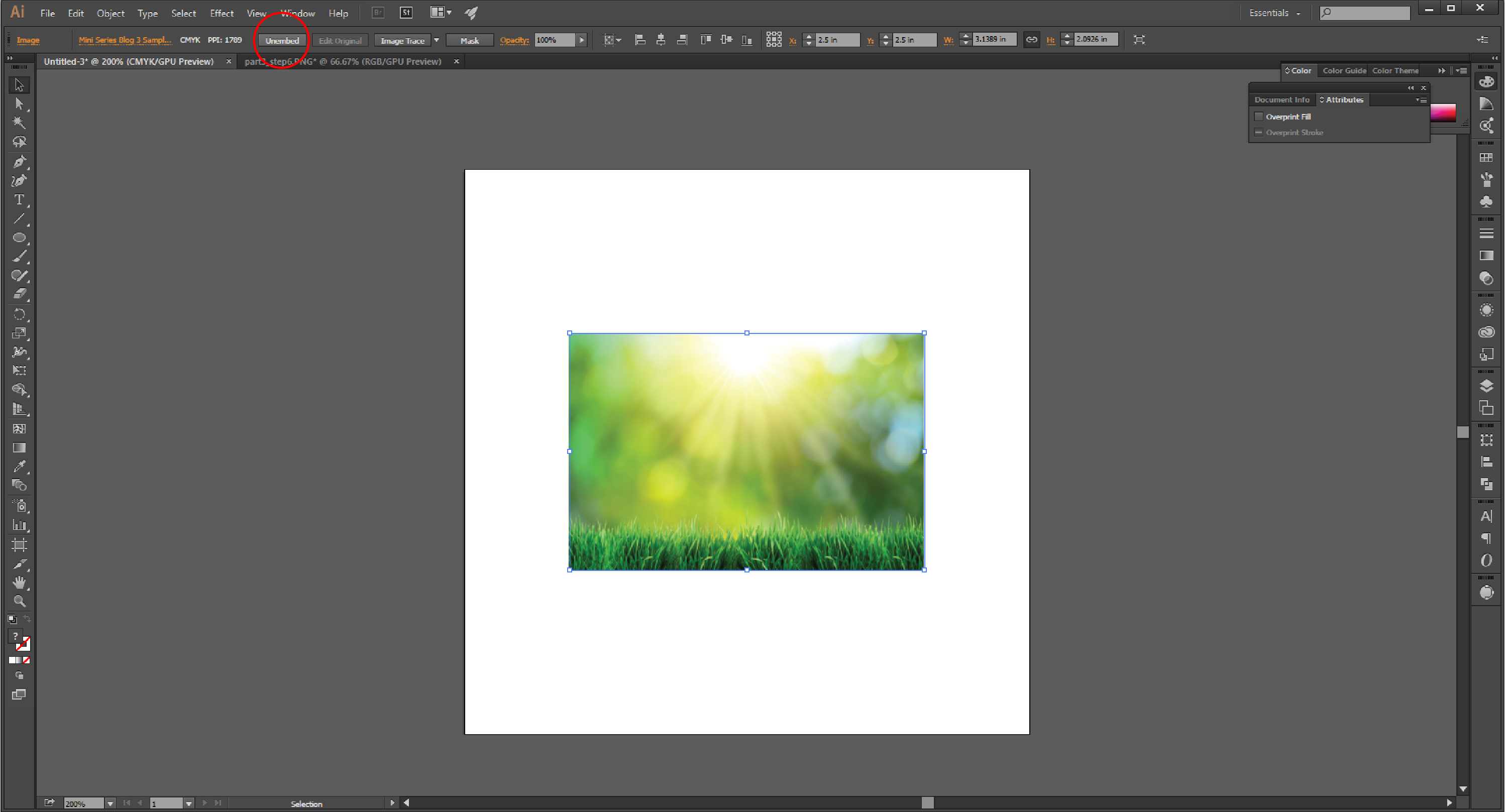 How to Embed an Image in Adobe Illustrator Step 7
