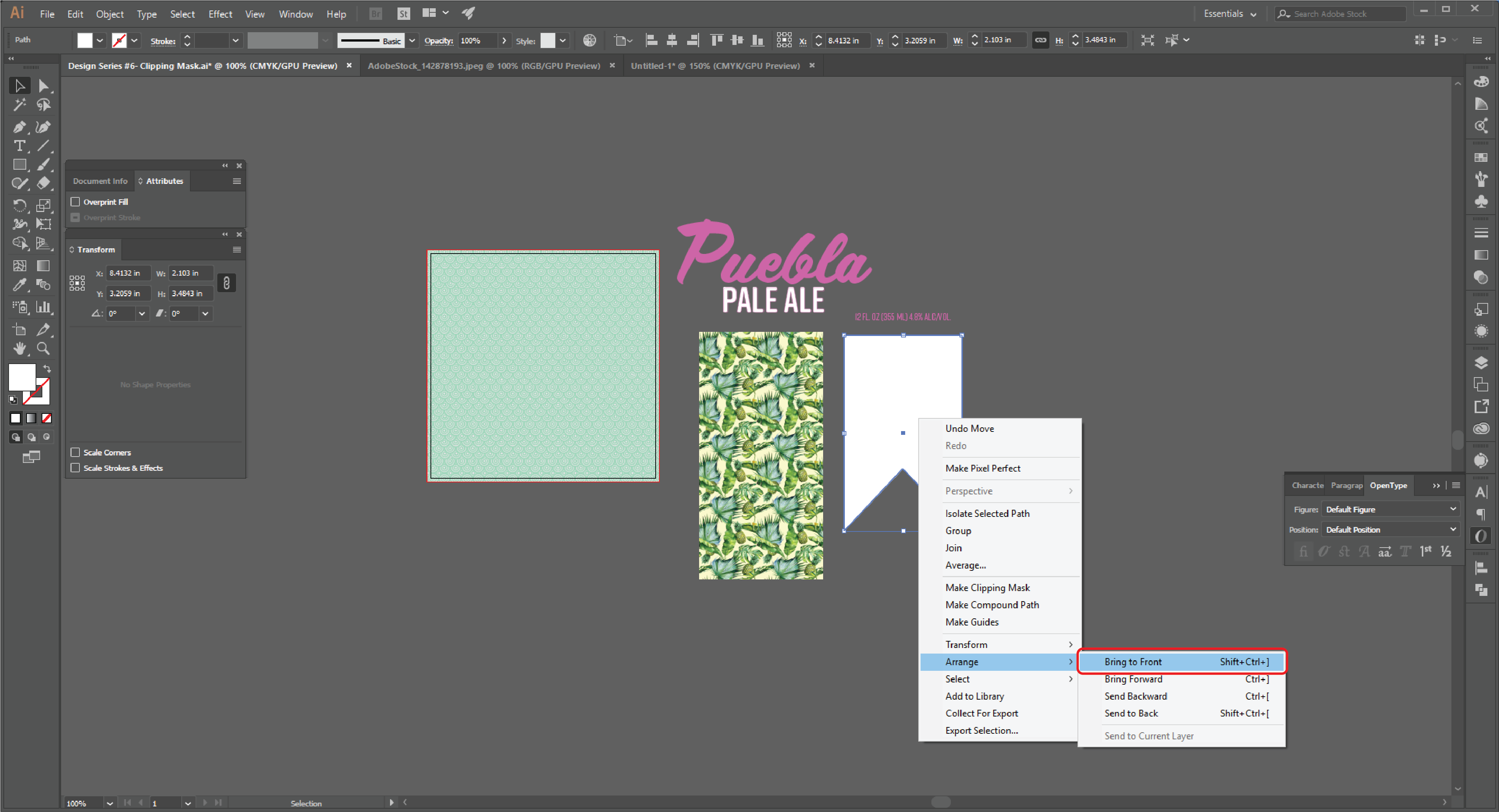 How to Create a Clipping Mask  in Adobe Illustrator -5