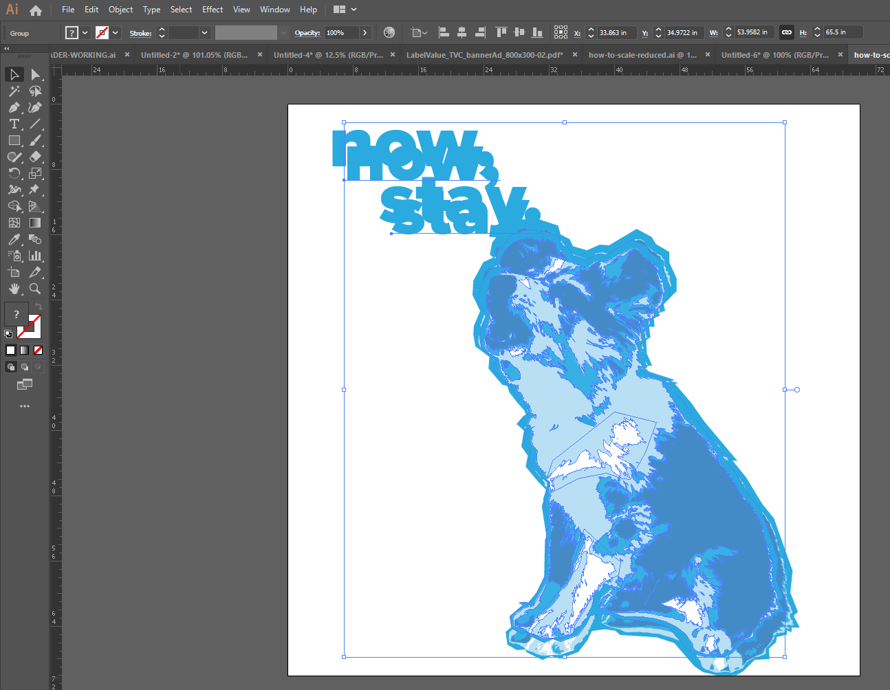 Checking scaled proportions remained the same Adobe Illustrator