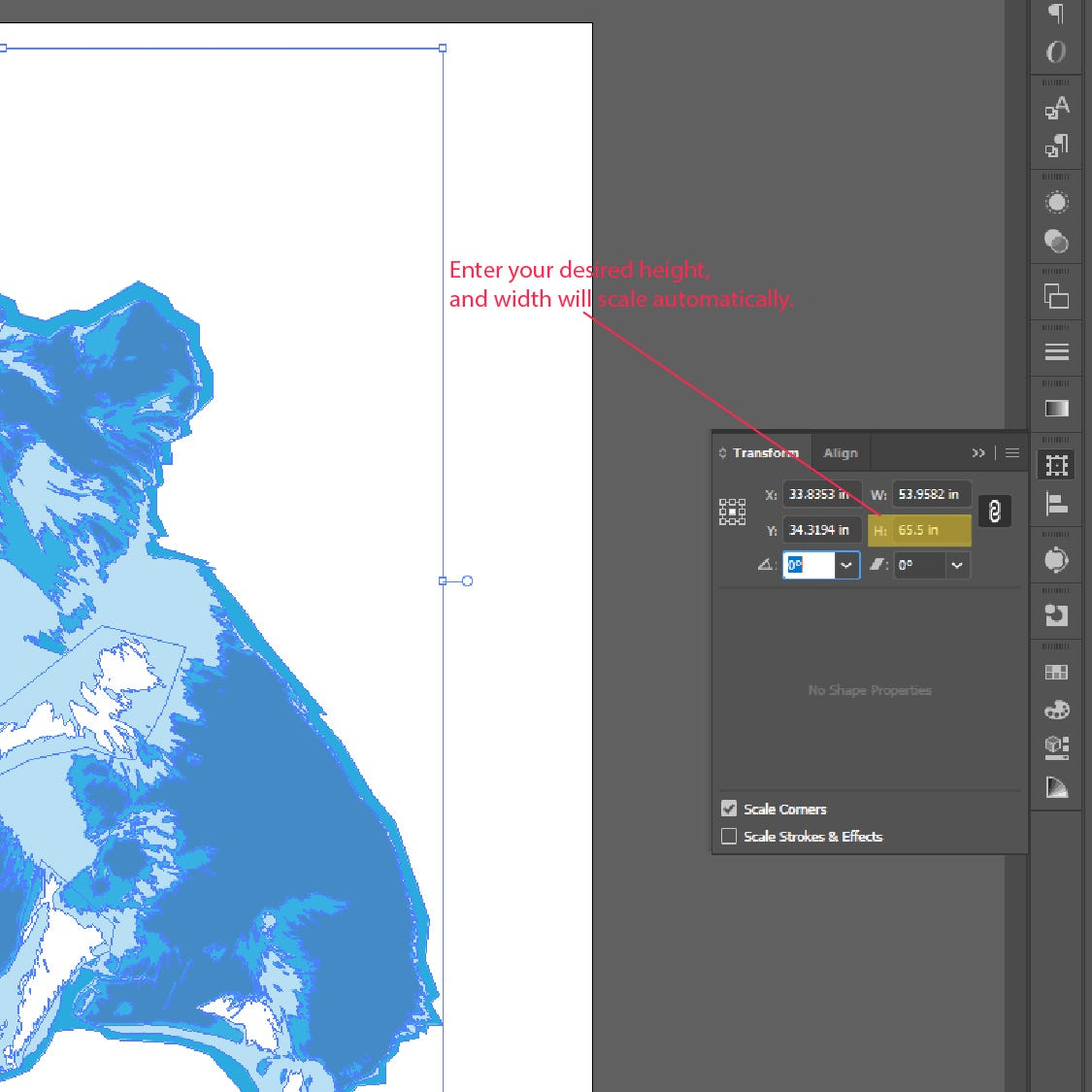 Step 5: How to Scale and Resize Objects in Adobe Illustrator